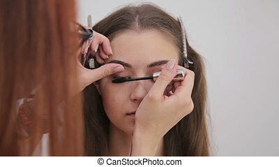 Close up shot.Professional make-up artist applying mascara...