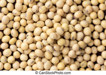 close up soybean on background. top view