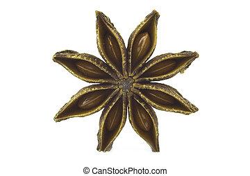 Close up Star anise, badiane spice isolated on white background
