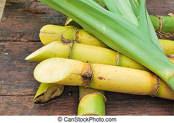 Close up Sugarcane  - Close up Sugarcane