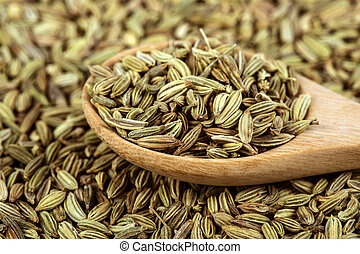 close up the fennel seed in wooden spoon
