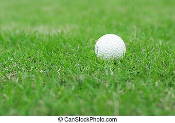 Close up to golf ball on green grass