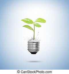 Tree Light bulb isolated