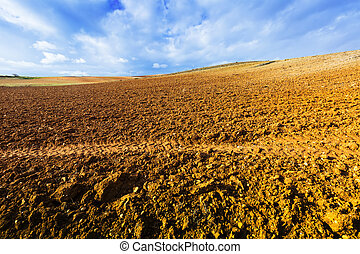 ploughed field under cloudy sky