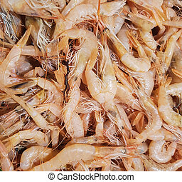Rose shrimps