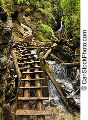 Close-up view of a trail made of wooden ladders with a waterfall nearby, Slovak Paradise National Park