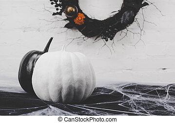 halloween pumpkins in cobweb