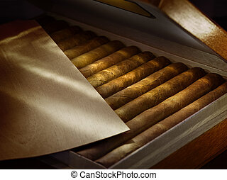 close up view of box of cuban hand made cigars in wooden humidor