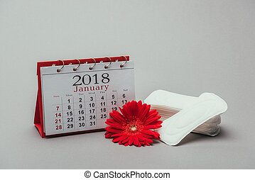 close up view of calendar, flower and menstrual pads isolated on grey
