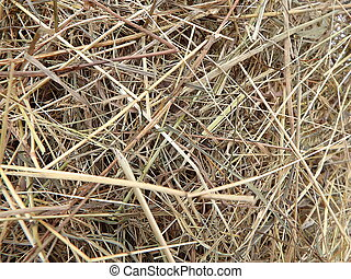 Close up view of dry hay