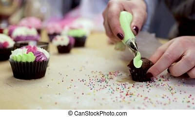 Close-up view of female hands decorating the chocolate cupcake, using pastry bag with colored cream.