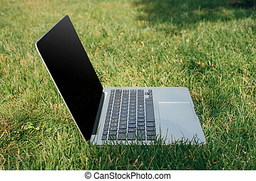close up view of laptop on green grass in park