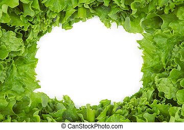 Close up view of lettuce in frame shape