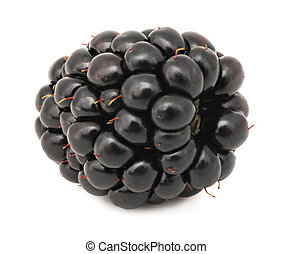 Close-up view of one blackberry (isolated)