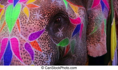 Close-up view of painted elephant