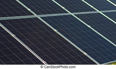 Close up view of photovoltaic panels and happy director of solar energy station.