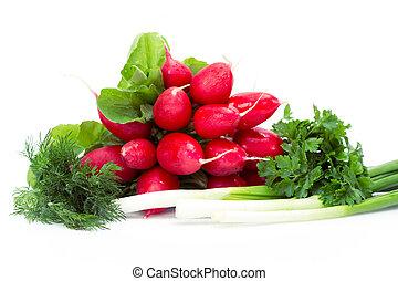Close up view of radish, onions, parsley, dill