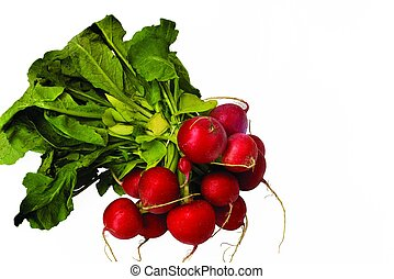 Close up view of red radish isolated on white background. Healthy food concept.