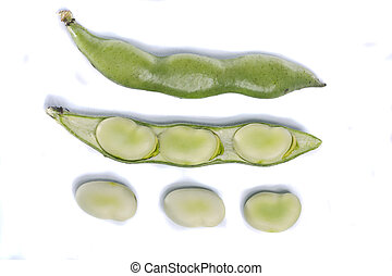 broad beans - Close up view of some broad beans isolated on...