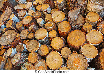 close up view on big pile of cutted tree trunks