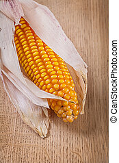 close up view on ear of corn