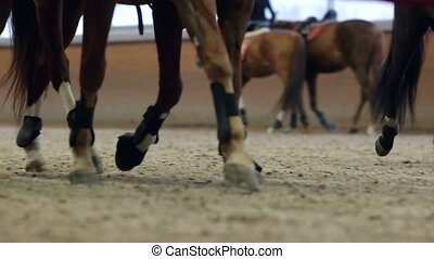 Close-up view on the hooves of horses running through a...