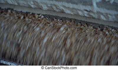 Close up view - pet food grain mill machine: mixed feed production line at factory