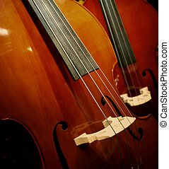 close-up, violin.
