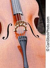 close up violin, music instrument