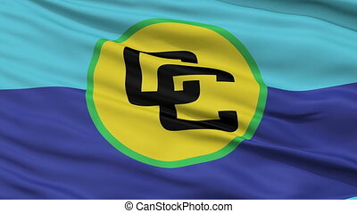 Close Up Waving Flag of Caricom