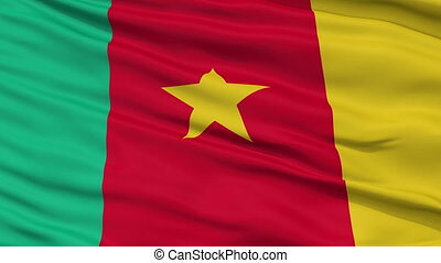 Close Up Waving National Flag of Cameroon - Cameroon Flag...