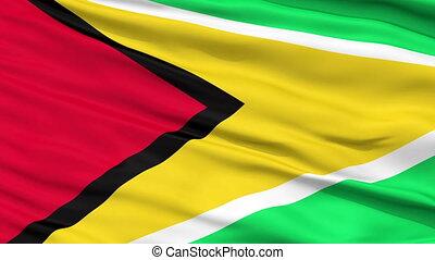 Close Up Waving National Flag of Guyana