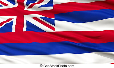 Close Up Waving National Flag of Hawaii - Hawaii Flag Close...