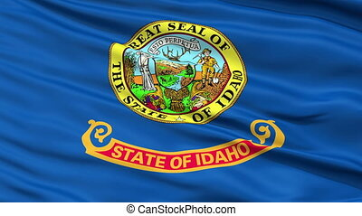 Close Up Waving National Flag of Idaho