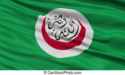 Close Up Waving National Flag of OIC