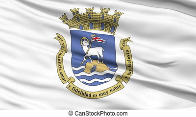Close Up Waving National Flag of San Juan City