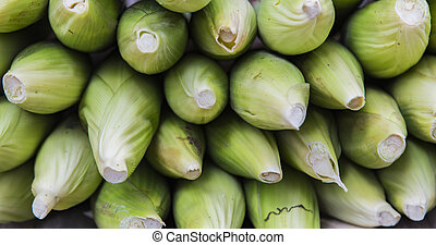 Corn cob and green leaves