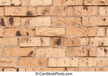 Close view of Tan Brick Wall
