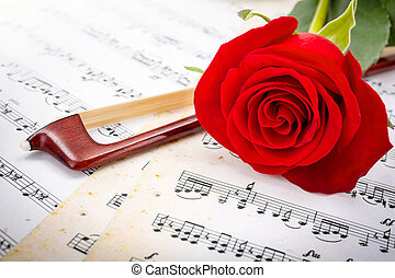 Close view of violin bow and red rose