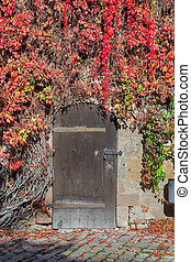 Closed door with vines in Nuremberg castle