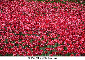 Closeu up of the Poppies at the Tower of London
