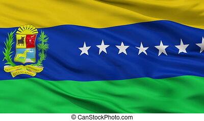 Closeup Apure State city flag, Venezuela - Apure State...