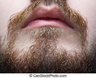 closeup, barba, brunastro, baffi, uomo