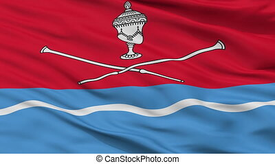 Closeup Biarozauka city flag, Belarus - Biarozauka closeup...