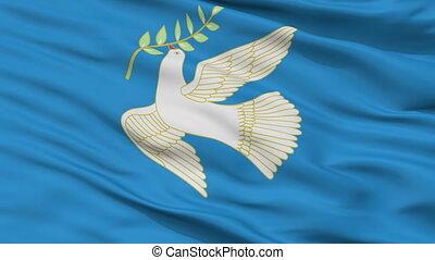 Closeup Blagoveshchensk city flag, Russia - Blagoveshchensk...