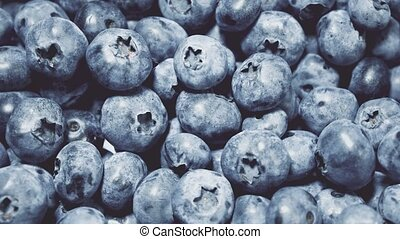 Closeup Blueberries rotating. Seamless looping, 4k. Fruit...