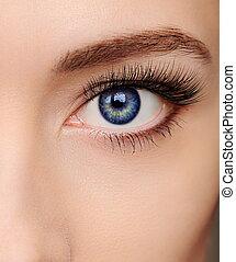 closeup, bonito, azul, olho mulher, com, longo, salão, chicotadas, olhar