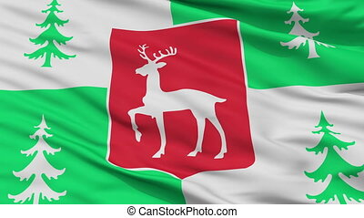 Closeup Borjomi Municipality flag, Georgia