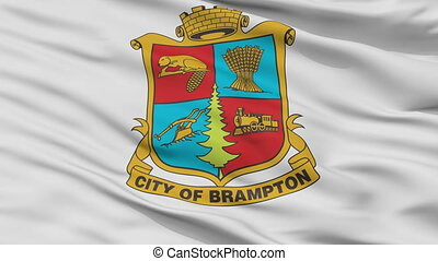 Closeup Brampton city flag, Canada - Brampton closeup flag,...