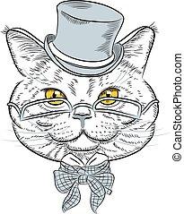 closeup, britannico, gatto, vettore, hipster, ritratto